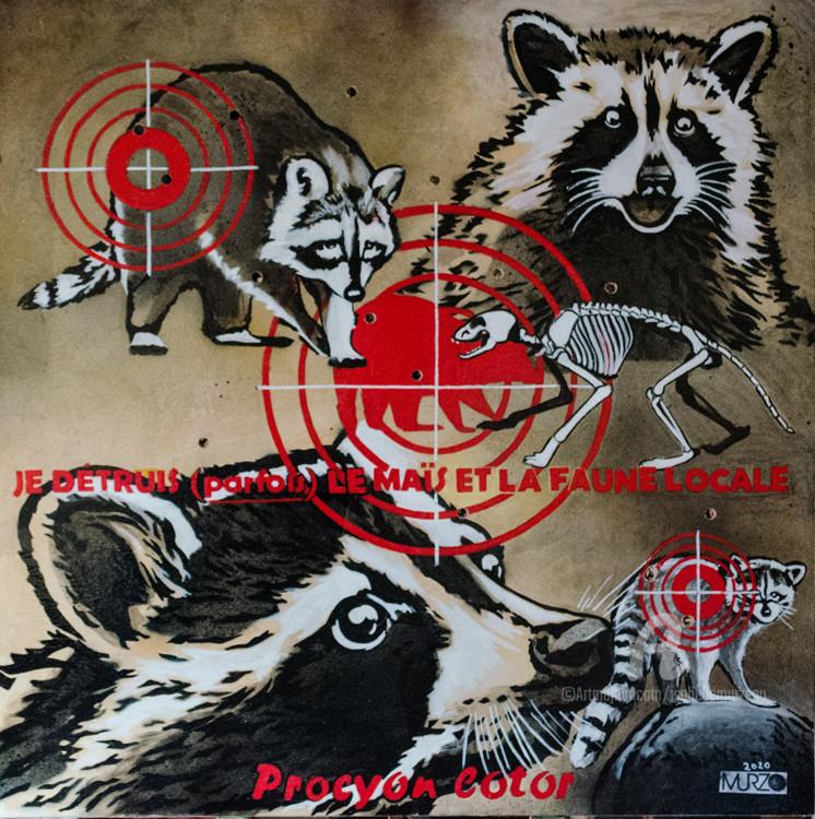 Murzo - Le raton laveur - Les mal aimés